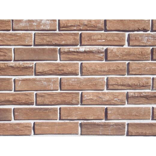 Z-Brick 2-1/4 In. x 8 In. Mesa Beige Design Image Facing Brick